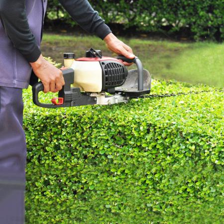Grünanlagenpflege 1